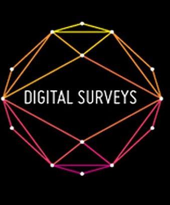 Digital Surveys Ltd