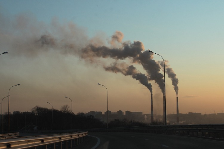 Carbon dioxide levels to fall to 2010 lows this year: IEA