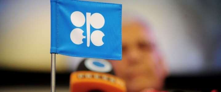 OPEC+ Concerned About India's Oil Demand