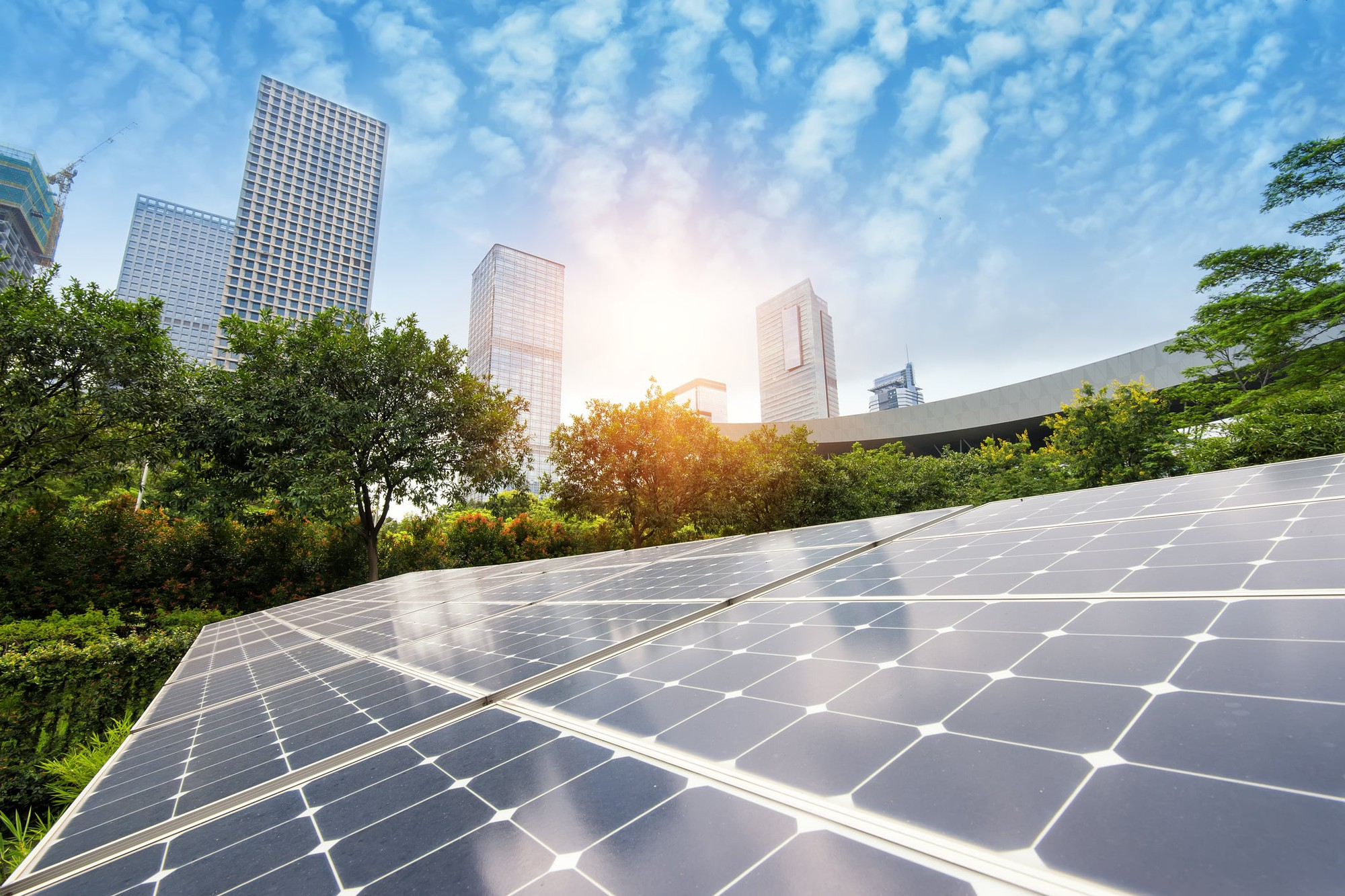 These 3 Renewable Energy Companies Are Getting Too Cheap to Ignore